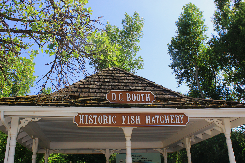 DC Booth Fish Hatchery