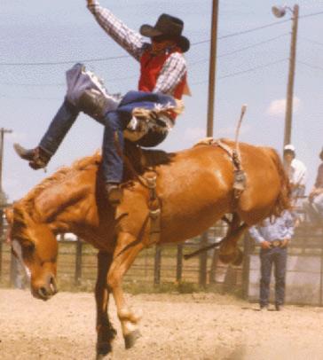 Hulett Rodeo