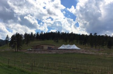 Black Hills Wines